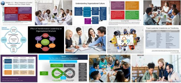 Study Organization and Leadership