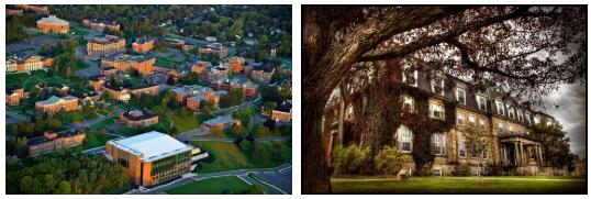 University of New Brunswick Review