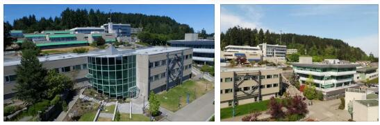 Vancouver Island University Review